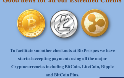 Cryptocurrency Payment Facility at BizProspex