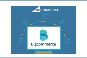 bigcommerce website