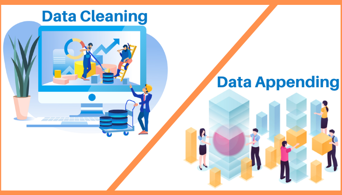 difference between data cleaning and appending