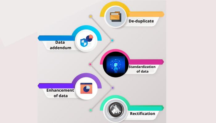 Data scrubbing services