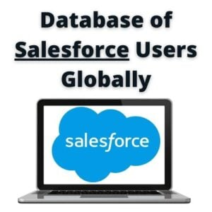 Salesforce users list