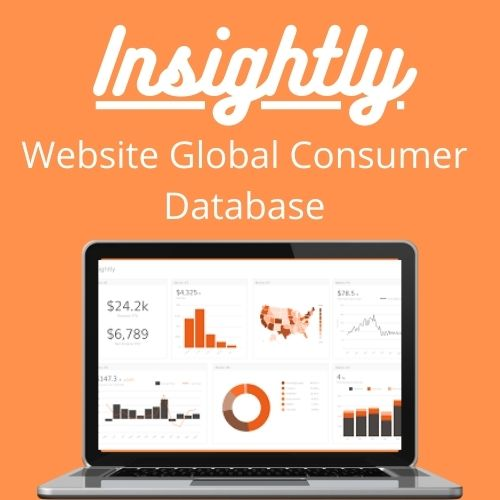 Insightly users