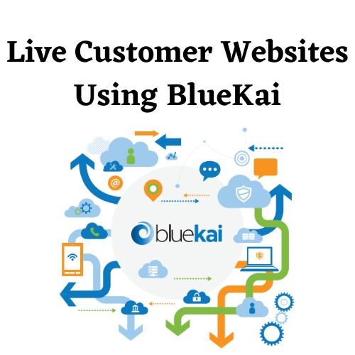 BlueKai Customers list