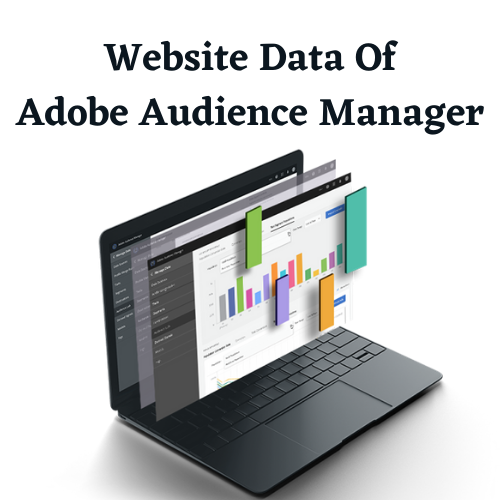 Adobe Audience Manager Users List